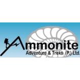 Ammonite Adventure