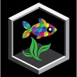 Cuboid Nature Aquarium