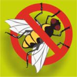 Insektenschutz-Krefeld.de