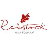 Rebstock Pinsa Romana