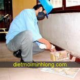dietmoiminhlong