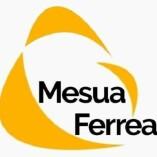 Mesua Ferrea