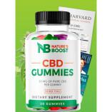 Natures Boost CBD Gummies