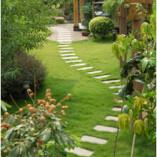 Greening Up Landscape Maintenance