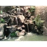 Aqua Gardens Plus