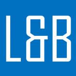 LB-Vision