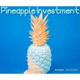 PINEAPPLE INVESTMENT, LLC