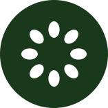 Kiwi Solutions