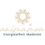 Animamea Akademie