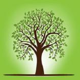 Tree Service of Charlottesville