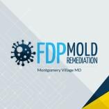 FDP Mold Remediation   Mold Remediation Montgomery Village