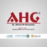 AHG Audit of Accounts