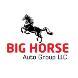 Big Horse Autogroup LLC