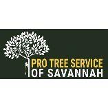 Pro Tree Service of Savannah