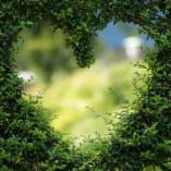 Paarglück - Eheberatung und Paartherapie Mainz