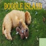 Pro Balance Borschel - Doodle Island