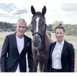 Pferde Charisma Training