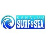 Kahalu'u Bay Surf and Sea
