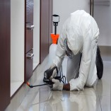 Professional Pest Control Geelong