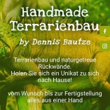 Handmade-Terrarienbau