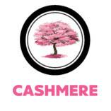 Cashmere Fusion Restaurant