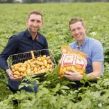 Hof Stürmeyer - Kartoffelvermarktung