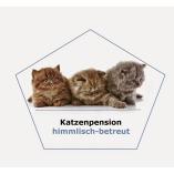 Katzenpension himmlisch-betreut
