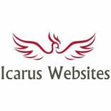 Icarus Websites