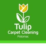Tulip Carpet Cleaning Potomac