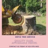 Ortiz Trees Service