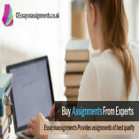 EssaysnAssignments Services