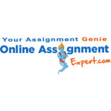 Online Assignment Expert