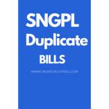 onlineduplicatebills.com