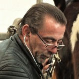 Tierheilpraxis - So geht Natur - der Tierheilpraktiker im Harz