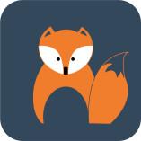 Foxmen-IT