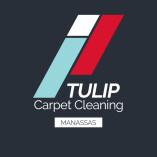 Tulip Carpet Cleaning Manassas