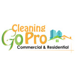 Go Pro Cleaning