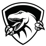 Raptor IT Consultants