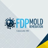 FDP Mold Remediation | Mold Remediation Catonsville