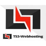 Ts3 Webhosting