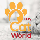 myCatWorld