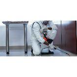 Pest Control Frankston