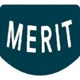 Merit Auto Spa Detailing Services