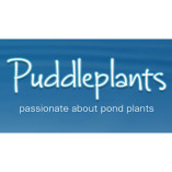 Puddleplants