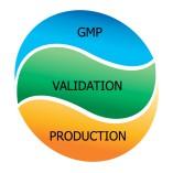 MA GMP Consulting GmbH