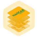 ICO Software Development