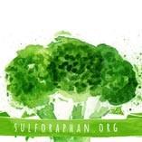 sulforaphan.org