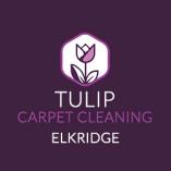 Tulip Carpet Cleaning Elkridge