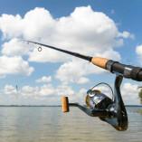 Austin Fishing Service
