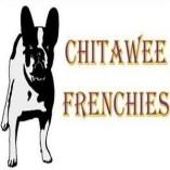 Chitawee French Bulldogs